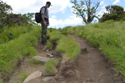 Blue Ridge Parkway botanist Chris Ulrey surveys the damaged trail at Craggy Bald.