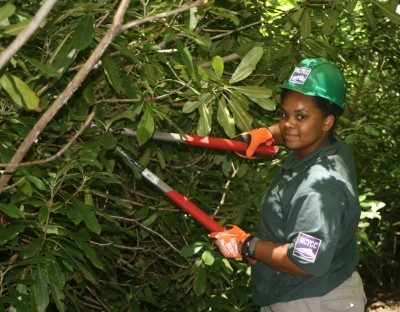 North Carolina Youth Conservation crew member