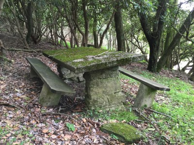 A picnic table in disrepair