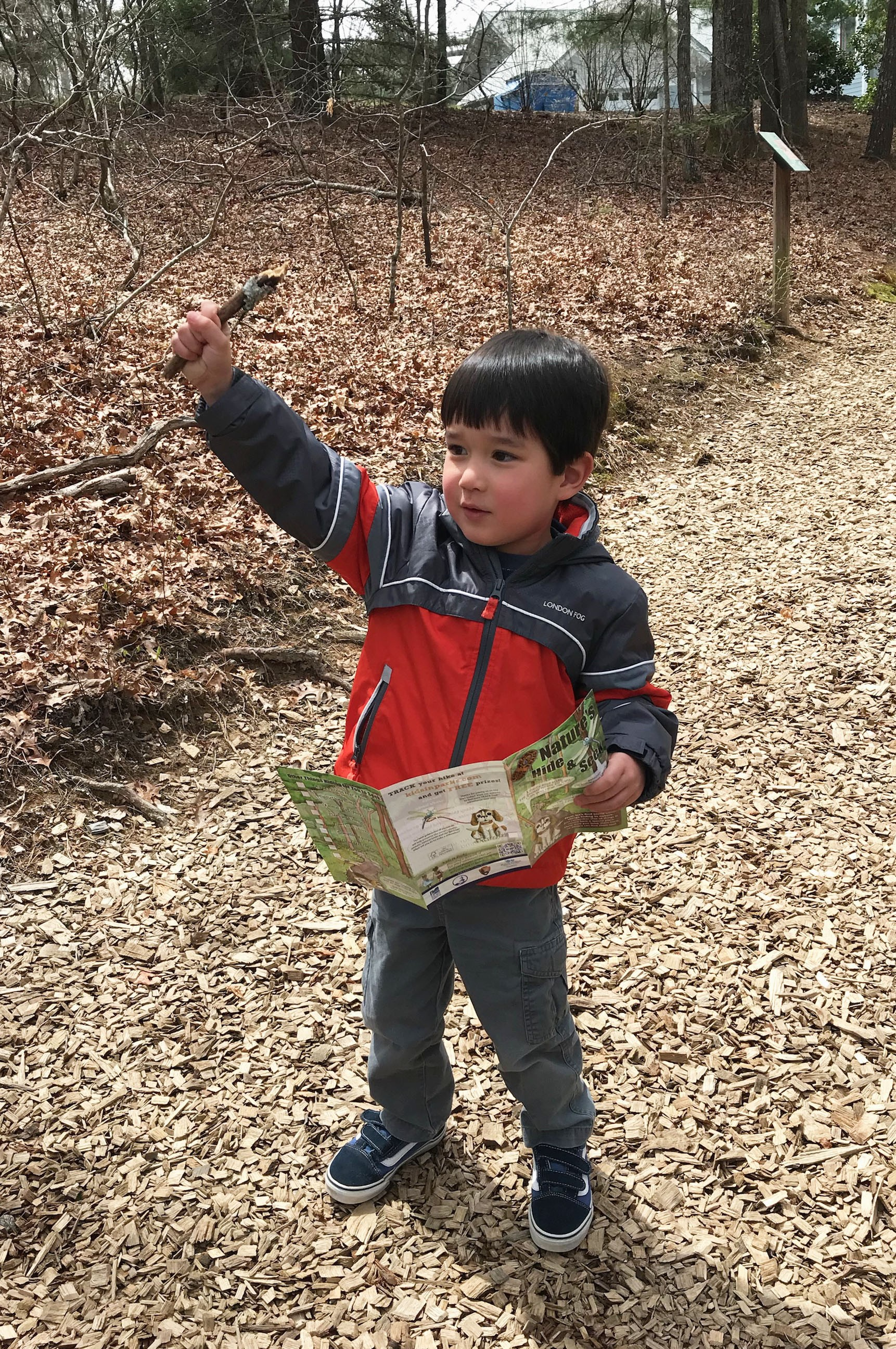 A child explores a TRACK Trail with a lichen brochure.