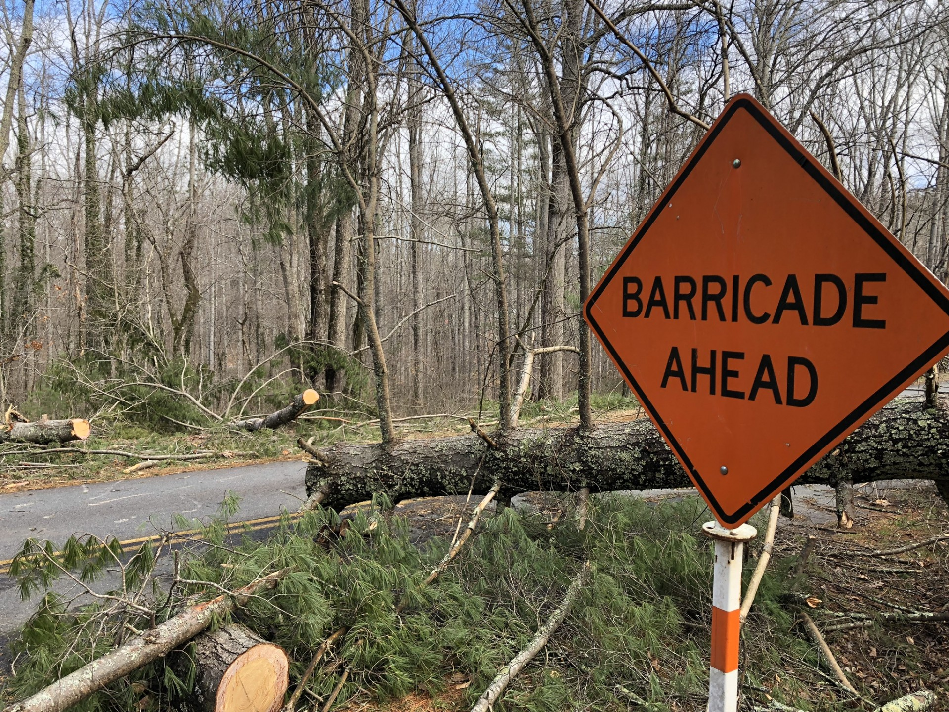 A downed tree blocks one lane of the Blue Ridge Parkway just north of the Folk Art Center in Asheville.